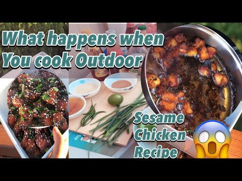 What Happens When You Cook Outdoor   Sesame Chicken Recipe   life of a Desi  
