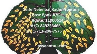 Seife Nebelbal Radio Program interview with Haacaaluu and Abush