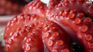 Video Japanese Street Food at Fishing Port: Tempura, Octopus, Grilled Eel MP3, 3GP, MP4, WEBM, AVI, FLV April 2019