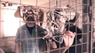 Video Janko Kulich & Kolegium: Vŕ haf haf  OFFICIAL VIDEO 2014