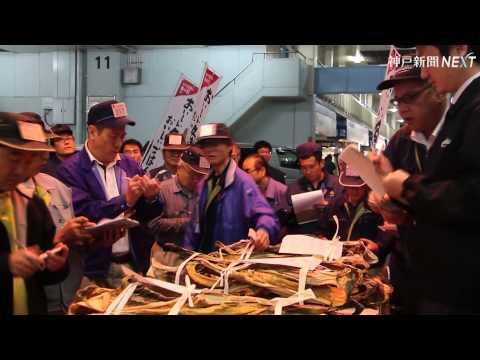神戸で今季棒鱈初競り
