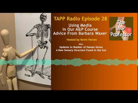Using Media in Our A&P Course - Advice From Barbara Waxer | TAPP Radio Episode 28
