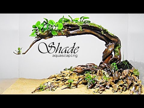Aquascaping SHADE