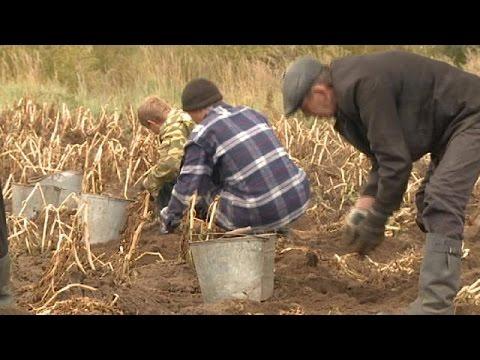 Ρωσία: Νόμος προβλέπει δωρεάν παραχώρηση γης για πέντε χρόνια