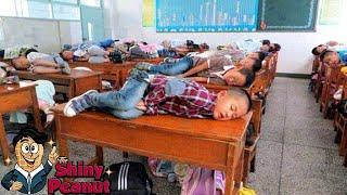 Video Dari Wajib Tidur Sampe Dilarang Menyentuh? 7 Peraturan Sekolah Teraneh MP3, 3GP, MP4, WEBM, AVI, FLV November 2017
