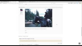 MJJ LEGION COM- How to Add Images To Your Story