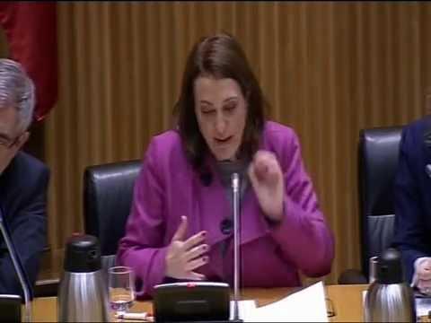 Acto Público contra la reforma de la Justicia Universal en el Congreso de los Diputados el 4 de marzo de 2014. APDHE. Parte 1