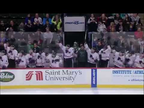 MN High School Hockey Tournament Tribute (видео)