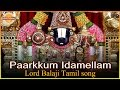 Lord Balaji Special Songs | Paarkkum Idamellam Tamil Devotional Song | Devotional TV