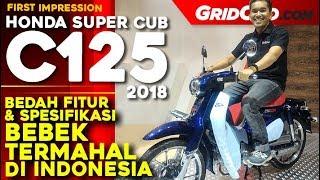 Download Video Honda Super Cub C125 | First Impression Review | GridOto MP3 3GP MP4