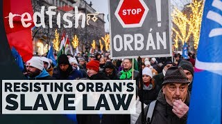Hungary First? Resisting Orban's Slave Law