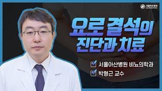 요로결석의 진단과 치료 미리보기