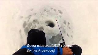2января 2014. Зимняя рыбалка. Камское устье, ловля судака и берша.