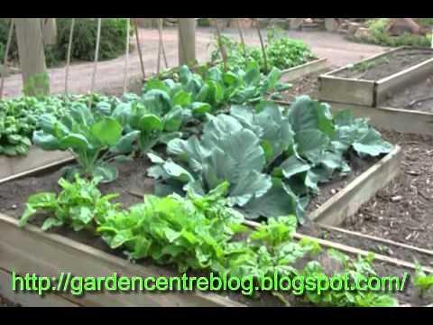 The Garden Centre