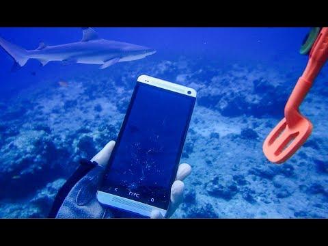 Мальдивы подводный поиск среди акул