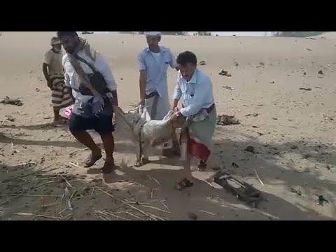 Υεμένη: Τουλάχιστον 22 παιδιά νεκρά σε βομβαρδισμό