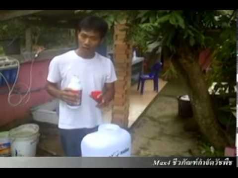 ชีวภัณฑ์ ยาฆ่าหญ้าปลอดสารพิษ (ทดสอบ EN version )