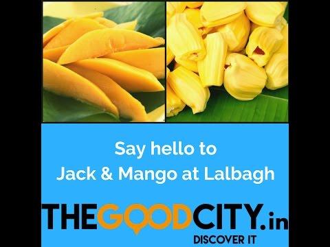 Mango & Jack Mela at Lalbagh, Bengaluru - Youtube Video