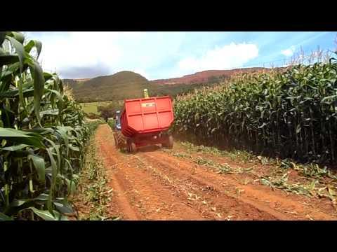 LS Tractor Plus 100 C com implemento ensiladeira