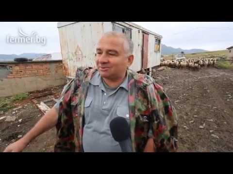 Овцевъд: 5 лв. по De minimis - да си паля свещи с тях ли?