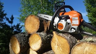 10. Stihl MS 181 - Best Starting Chainsaw for the Modern Homesteader