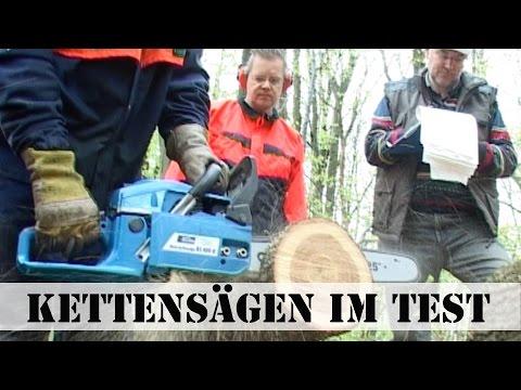 Kettensägen im Test