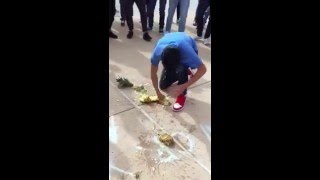 pineapple fight at cvhs