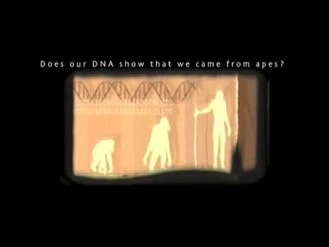 Jonathan Sarfati – Does our DNA show that we came from apes?