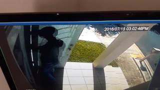 Levittown Puerto Rico  City new picture : Sujetos cometen robo domiciliario en Levittown