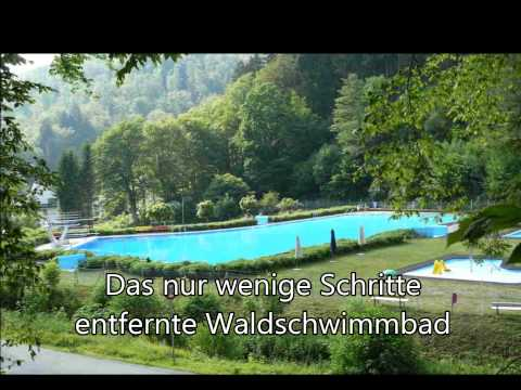Campingplatz im Waldwinkel Video