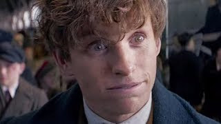 Video The Absolute Best And Worst Harry Potter Films Ever Made MP3, 3GP, MP4, WEBM, AVI, FLV Juni 2018