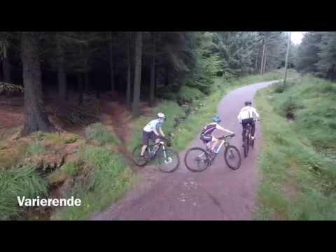 Regionsmesterskap på sykkel i skogen