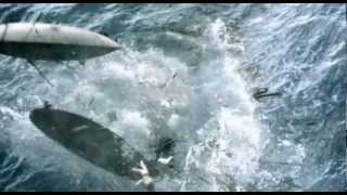 Nonton Moby Dick (2010) Trailer Film Subtitle Indonesia Streaming Movie Download