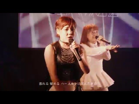 『ハーメルンの夕暮れ』 PV Live Ver. ( DEAR KISS #DEARKISS )