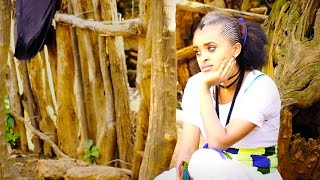 Yared Berhe - Tetsebeyni / New Ethiopian Tigrigna Music (Official Video)