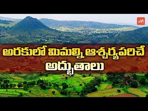 Places To Visit In Araku Valley In AP | Araku Valley Tourist Places in Telugu | YOYO TV Channel