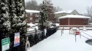 Asheville (NC) United States  city photos gallery : Snow In Asheville, North Carolina, USA, 01/22/2016