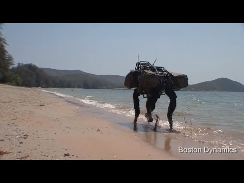 BigDog Beach'n