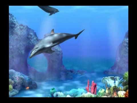 el mar (mare) - ray conniff - rimasterizzato - melodia relax