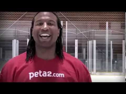 Olympics Sochi 2014 VEGAN Diet NHL Hockey Highlight (USA Winter Games Ski Speed Skating Sports