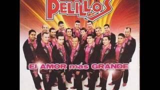 Hoy vuelvo a soñar (audio) Banda Pelillos