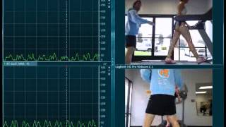 EMG Assessment During Gait