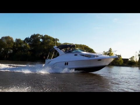 Spot Cruiser Trento 290 Success 2016