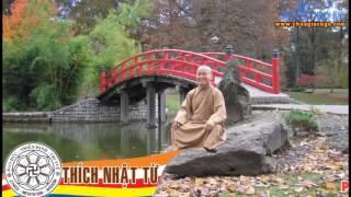 Chân Dung Phật Tử (Vấn Đáp) - TT.Thích Nhật Từ