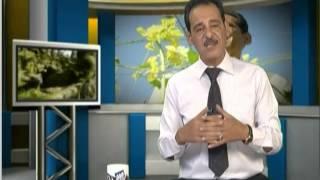جنة الاعشاب مع حسن خليفة على البابلية  كف مريم 05