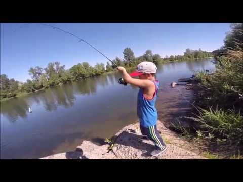 fishing on a river bank with corn_Horg�szat vide�k