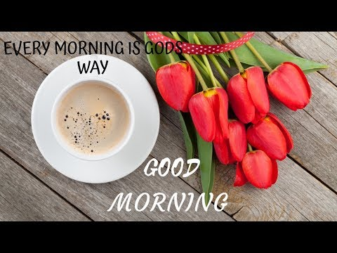 Love SMS - GOOD MORNING WISHES 2019/GOOD MORNING SMS,QUOTES, WALLPAPERS/ WHATSAPP STATUS/30 SEC VIDEO