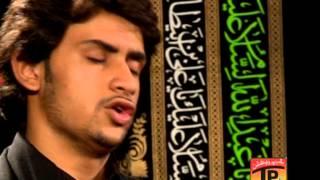 Na Rida Bachdi Na Bhira Bachdi, Zeeshan Haider 2013 14