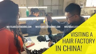 How to FIND a HAIR VENDOR | TOP SECRET footage from our Trip To CHINA | INSIDE A HAIR FACTORY!!! by The Weed Show with Charlo Greene