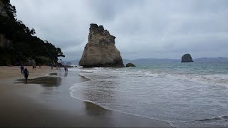 Whitianga New Zealand  city pictures gallery : Whitianga, New Zealand